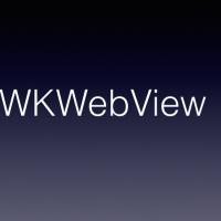 WKWebView 사용 시 필수적으로 넣어줘야 하는Delegate 넷.
